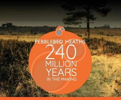 Pebblebed Heath Zoom